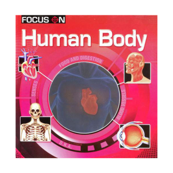 Ws Focus On Human Body