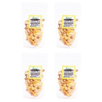 Greenola Tropical Nut Trail Mix Set of 4