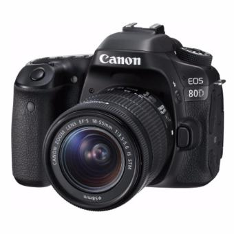 Canon EOS 80D + 18-55mm f3.5-5.6 IS STM - intl