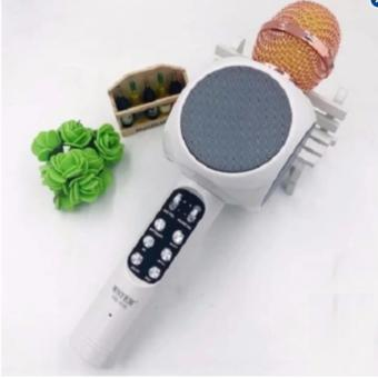 Wster WS-1816 Karaoke KTV MIC Portable Bluetooth Speaker Microphone