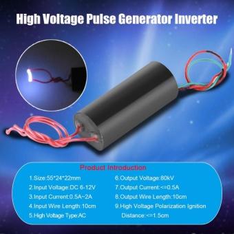 80kV High Voltage Pulse Generator Inverter Super Arc Pulse IgnitionModule 6- 12V - intl