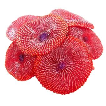 HKS Fake Coral Soft Disc Aquarium Decor Red (Intl)