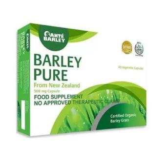 Sante Pure Barley 500mg 60 Capsules Food Supplement