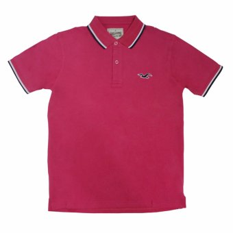 Hollister-1601 Men's Polo Shirt(Pink)