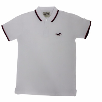Hollister-1601 Men's Polo Shirt(White)