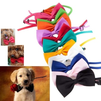 15 Candy Colors Adjustable Dog Bow Tie Neck Accessory Puppy Bright Cat Kitten Pet Toy Kid Bow Tie Necktie (Color:Yellow) - intl