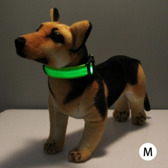 Adjustable 3-Mode LED Flashing Dog Collar, Size: M(Green) - intl