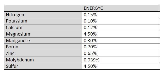 Energyc Contents.jpg