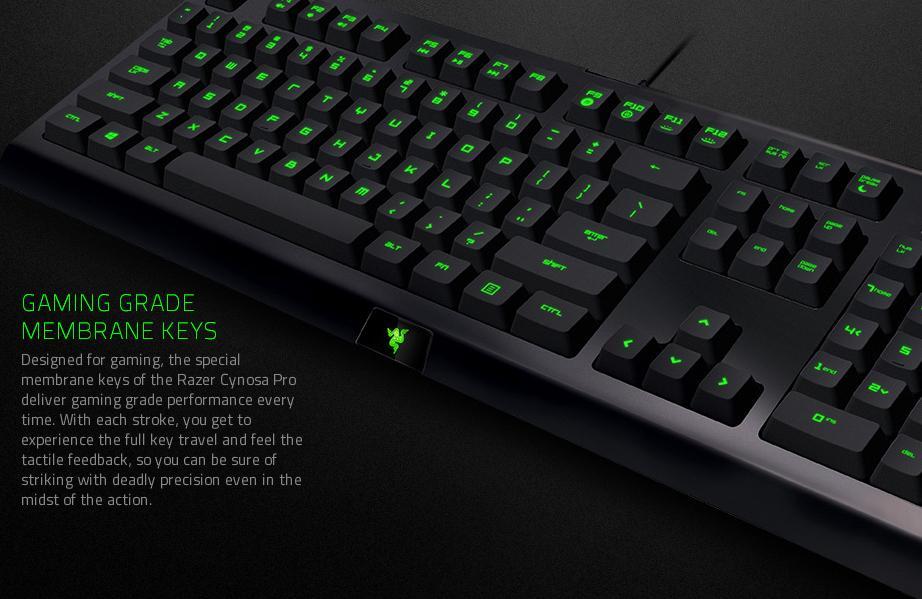 fb910922e32 Razer Cynosa Pro Gaming Bundle (Cynosa Keyboard + Deathadder Mouse ...