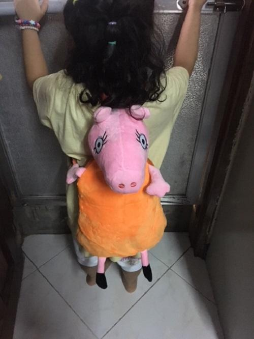 Peppapig Plush Bag By Dl & Lians Shop.