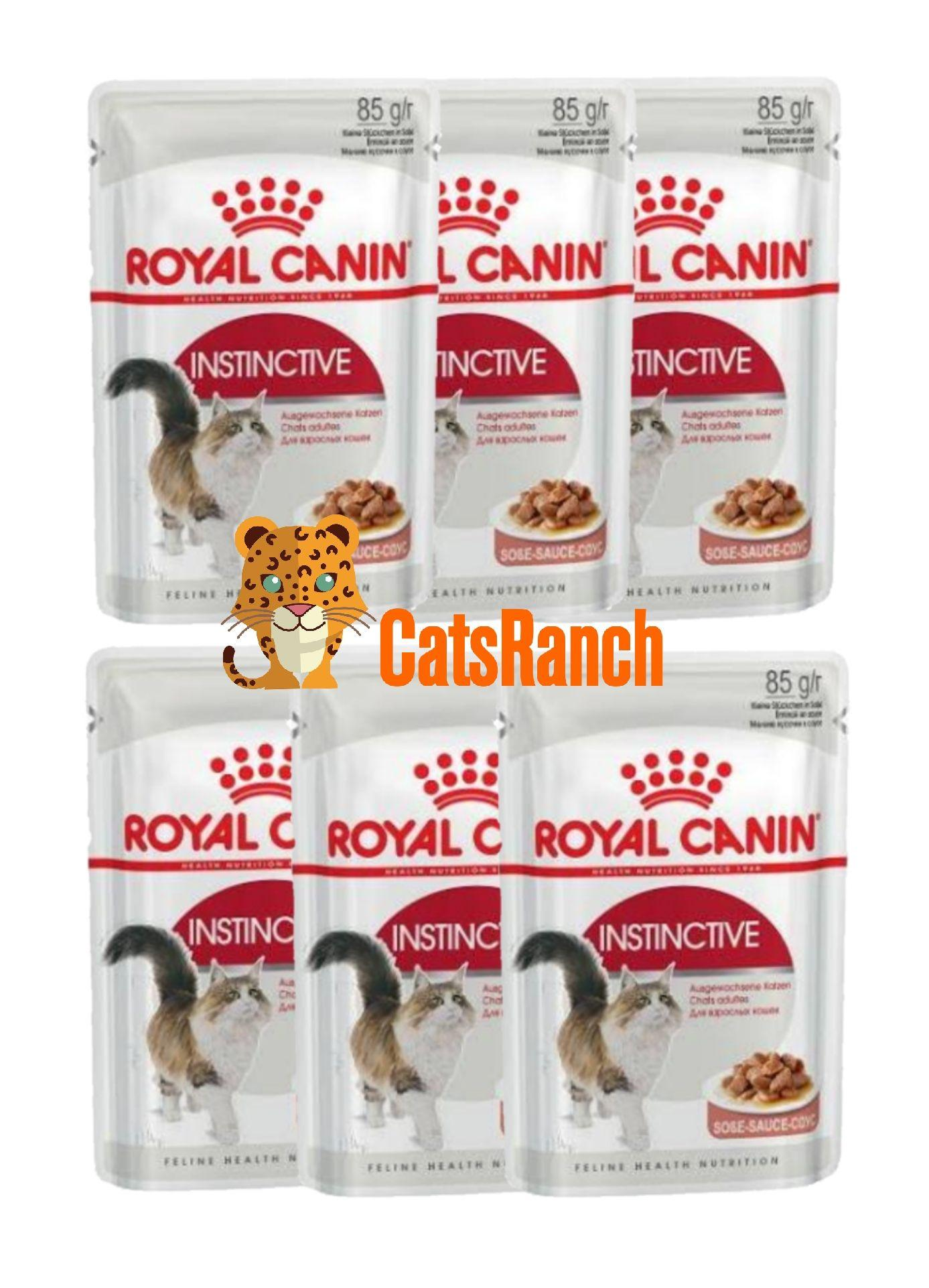Cat Food Philippines Royal Canin Persian Adult 1kg Instinctive Set Of 6 Wet 85g