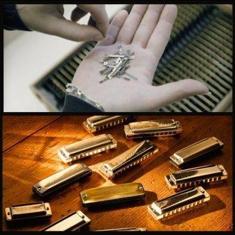 10 Holes Diatonic Blues Harp Harmonica Key of C Translucent - 4