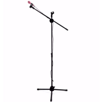 Dual Mic Clip Floor Type Microphone Stand (Black)