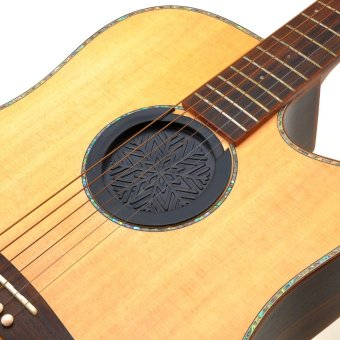 Feedback Buster For Acoustic Guitars
