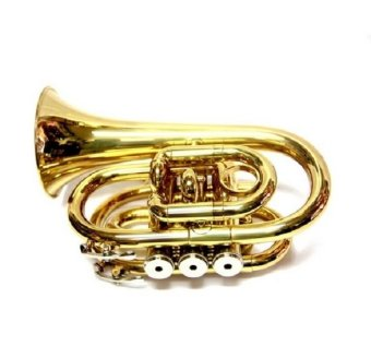 Harga Global Pocket Trumpet