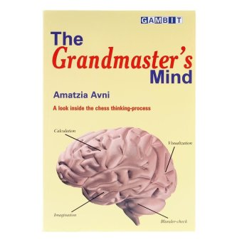 The Grandmaster's Mind: A Look Inside the Chess Thinking-Process