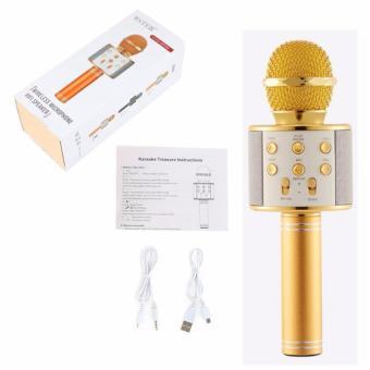 WS-858 NEW Karaoke Microphone and Wireless Bluetooth Hi-Fi Speaker (Gold) - 3