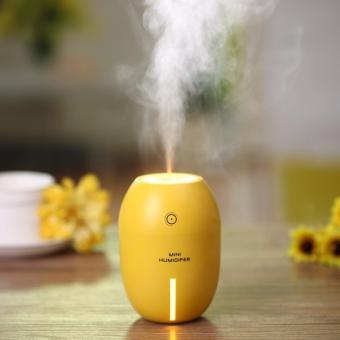 Fruit Design Mini Air Humidifier Free Fragrant Essential Oil(Flavor May Vary)