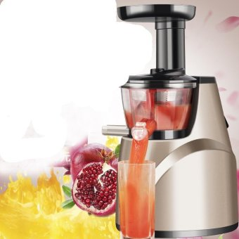 CBZJHD DSHSHR AHDIH EUQEU Best Whole Fruit Slow Juicer ( Imports) - intl Price Philippines