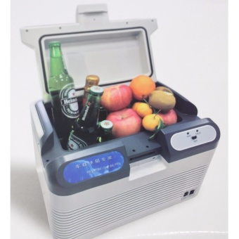 Portable Mini Refrigerator Price Philippines