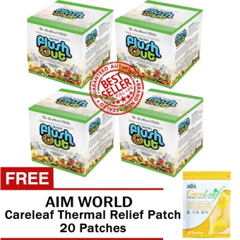Flush Out Colon Cleanse Prebiotics & Probiotics 4 Boxes (10 Sachets/Box) with FREE Aim Global Careleaf Thermal Relief Pack