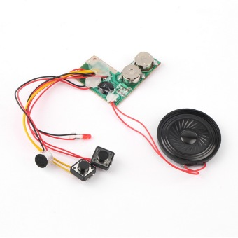 Allwin Recordable Voice Module for Greeting Card Music Sound TalkChip Musical