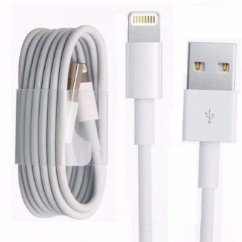 Apple 1m Lightning to USB Cable (White) Price Philippines