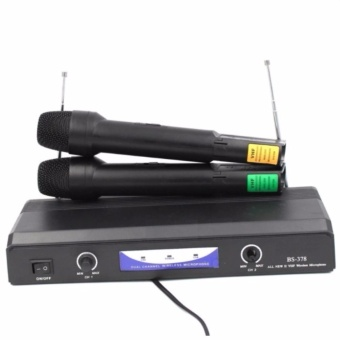 BS378 Hi-Fi Dual Channel Professional Two Wireless Microphone #0914