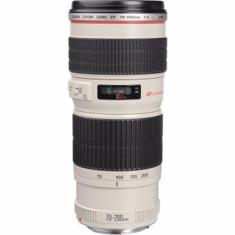 Canon EF 70-200mm f/4L f4L USM Lens (White/Black) - picture 2