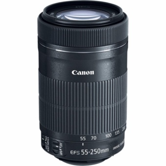 Canon EF-S 55-250mm F4-5.6 IS STM - intl