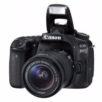 Canon EOS 80D 24.2-Megapixel EF-S 18-55mm f/3.5-5.6 IS STM Lens[Lens Kit]