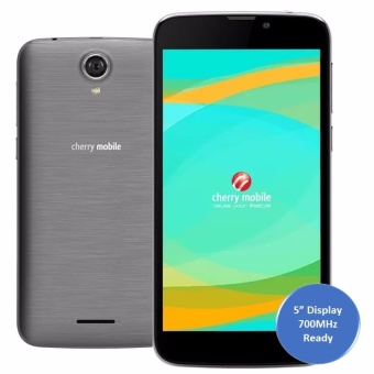 Cherry Mobile Flare A3 8GB (Grey)