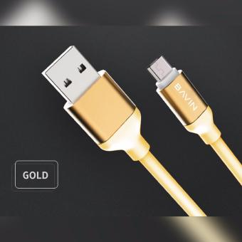 Bavin CA268 USB Data Cable 3 meters (Gold) Price Philippines