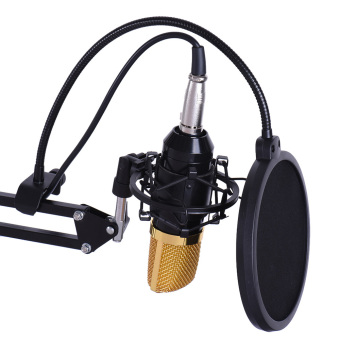 Professional Broadcasting Studio Recording Condenser Microphone MicKit with Shock Mount Adjustable Suspension Scissor Arm StandMounting Clamp Pop Filter - intl - 4