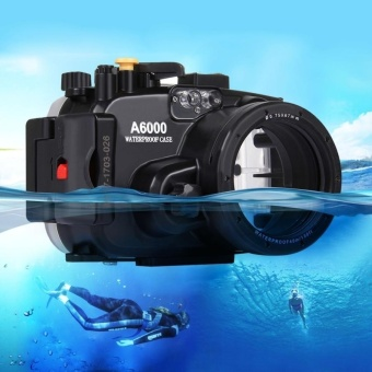 PULUZ 40m Underwater Depth Diving Case Waterproof Camera Housingfor Sony A6000 - intl Price Philippines