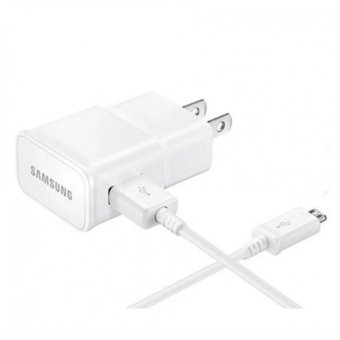 Samsung 10W Charger With 2.0 Data Sync Cable