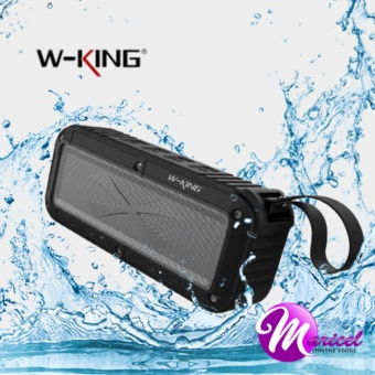 W-King S20 Waterproof, Dust-Proof, Shock-Proof Bluetooth Speaker with FM Radio/TF and AUX Slot (Black)
