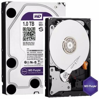 Western Digital WD Purple 1TB Surveillance Hard Disk Drive -WD10PURX - 2