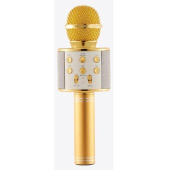 WS-858 NEW Karaoke Microphone and Wireless Bluetooth Hi-Fi Speaker (Gold)