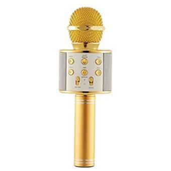 WS-858 NEW Karaoke Microphone and Wireless Bluetooth Hi-Fi Speaker(Gold)
