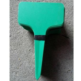 100pcs T-type Plastic Plant Flower Tags Nursery Garden Labels Markers Green (Intl)