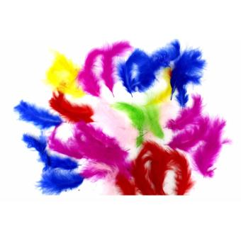 #106-A D.I.Y Craft Feathers Assorted Colors