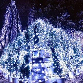 10M 80-LEDs 3-Mode Battery Powered LED String Lights LED Strip Lights Lamps for Christmas /Wedding /Party (White Light)