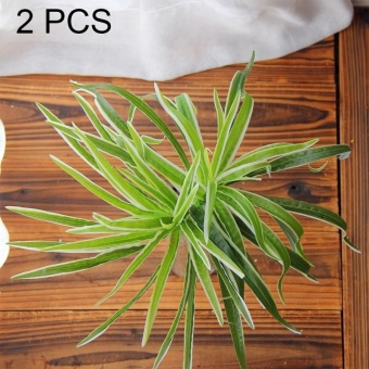 2 PCS Artificial Plants For Plastic Flowers Household StoreSupplies Decoration Sabaigrass With White - intl