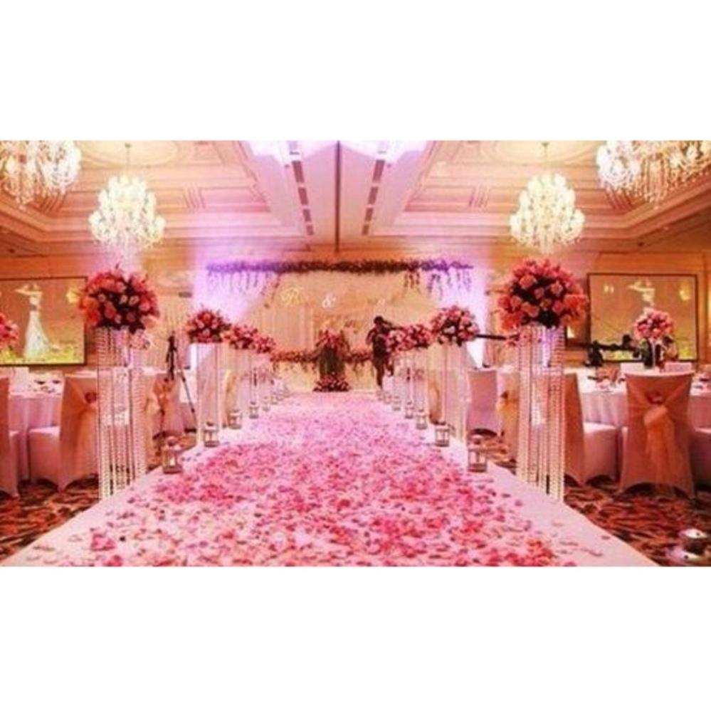 Philippines | 2000pcs Silk Rose Petals Flower Wedding Confetti ...