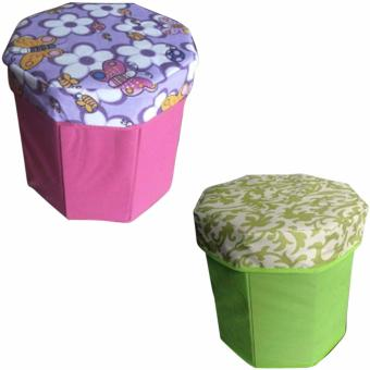 3D Ottoman Storage Chair Set of 2 (Assorted Design and AssortedColor)
