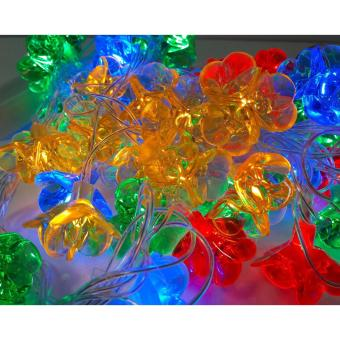 50L Musical Tri Flower Christmas x-mas Light Mabuhay Star ICC Complaint(Multicolor)