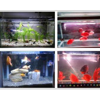 58CM Waterproof RGB LED Aquarium Light Fish Tank Lamp With IRRemote   Intl