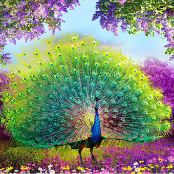 5D Peacock DIY Diamond Embroidery Painting Flower Cross Stitch Home Decor Craft