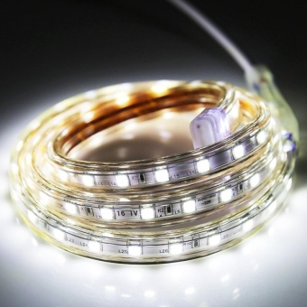 60 LEDs SMD 5050 Casing IP65 Waterproof LED Light Strip With PowerPlug, 60 LED/m, Length: 1m, AC 220V(White Light) - intl